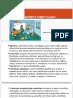Elementos curriculares.pptx