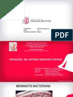 3RA PRACTICA.PATOLOGIA DEL SISTEMA NERVIOSO.pdf