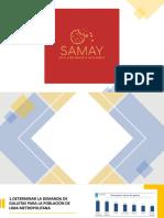 Samay - Herramientas Cualitativas