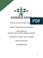 PLANTA DE GAS EN BOLIVIA.docx