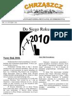 Chrząszcz - Styczeń 2010 (nr 46)