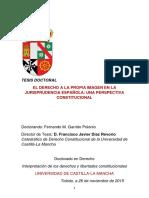 TESIS Garrido Polonio - propia imagen.pdf