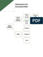 Sintesis 15 Ciencias.pdf