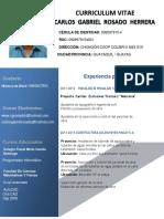 Curriculum Vitae Ing Carlos Rosado Herrera.pdf