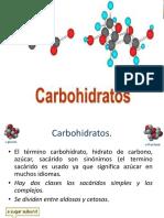 10 carbohidratos simples.pdf