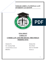 Cyber Law and IPR issues.pdf