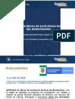 Becas Excelencia Doctoral Bicentenario_Docentes ocasionales y catedráticos.pptx