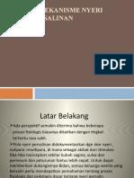 368458170-Mekanisme-Nyeri-Persalinan.pptx