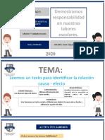 EL TEXTO CAUSA - EFECTO