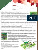 Benefícios-das-Árvores.pdf