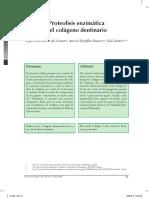 proteolisis enzimatica del colageno dentario.pdf