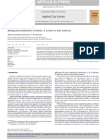 Biological beneficiation of kaolin