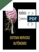 Sistema-autonomico.pdf
