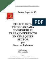 Bonus Especial 3. Stuart Lichtman - Conseguir El Trabajo Perfecto