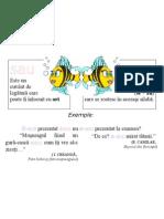Plansa Ortograme - Sau, S-Au