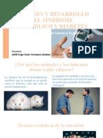 ORÍGENES Y DESARROLLO DEL SÍNDROME METABÓLICO Y DIABETES