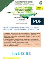PRODUCCIÓN INDUSTRIAL CON LA AYUDA DE MICROORGANISMOS – PRODUCTOS LÁCTEOS.pptx