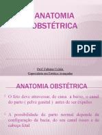 ANATOMIA OBSTÉTRICA-05 (1)