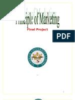 marketing project  on piza hut