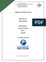 Rapport_Tunisie_Telecom_juillet_2019.pdf