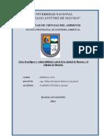 Lista de peligros y vulnerabilidad a nivel de la ciudad de Huaraz.docx