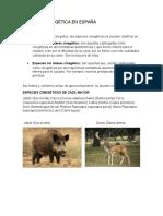 LA FAUNA CINEGÉTICA EN ESPAÑA- Fauna
