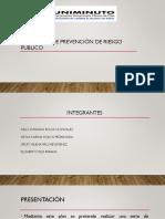 PROGRAMA DE PREVENCIÓN DE RIESGO PÚBLICO