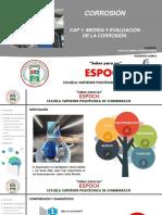 Corrosión Ram pdf.pdf
