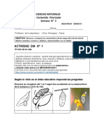CIENCIAS NATURALES  SEGUNDO BASICO   CONTENIDOS PRIORIZADOS   LUNES 20 SE SEPT.docx