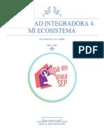 CruzCastillo_Francisco_M15S2AI4.docx