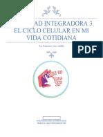 CruzCastillo_Francisco_M16S2AI3.docx