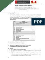 BASES CAS VIRTUALIZADAS v4 CAS N°201-2020.pdf