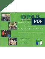 Certificado Reconocimiento OPAS