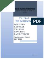 CAUSAS DE DIMISIÓN
