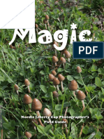 Magic_Nordic_Liberty_Cap_Photographer's_field_guide