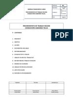 PROCEDIMIENTO DE TRABAJO CONDUCCION CAMIONES flores.doc