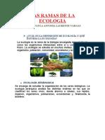 LAS_RAMAS_DE_LA_ECOLOGIA