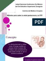 Metodos-de-Edad-Gestacional.pptx