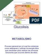 GLUCOLISIS F