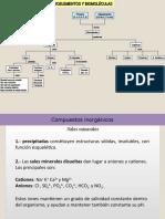 BIOMOLECULAS1701.ppt