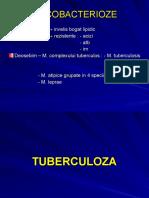 Curs Tuberculoza si Lepra