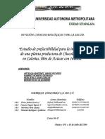 UAMI13216.pdf