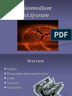 Murrin-Final-Falciparum