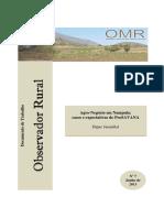 Observador-Rural-07.pdf