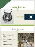 O Lince-Ibérico