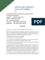 SENTENCIA DE APOYO Y SALVAGUARDIA