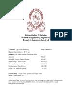 Asociaciones profesionales.docx