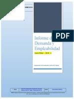 MODELO DE INFORME DE DEMANDA Y EMPLEABILIDAD - 2020 (2)