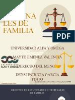 LOS TRIBUNALES DE FAMILIA