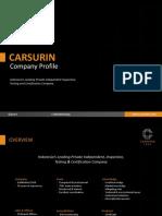 CARSURIN Company Profile (2020)